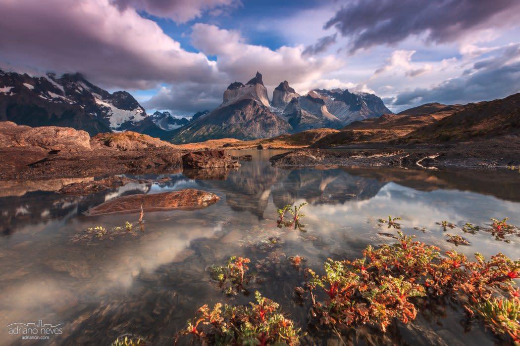 Eden's Garden - Chile, Patagonia