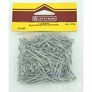 25mm Galvanised Round Wire Nails (250g)
