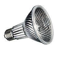 Spot Light Bulbs