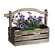Apollo Decorative Basket Garden Planter