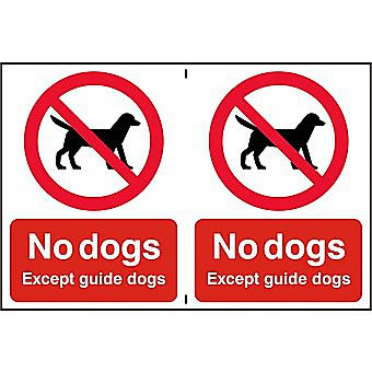 Centurion No Dogs Except Guide Dogs Sign Sheet of 2 300 x 200mm