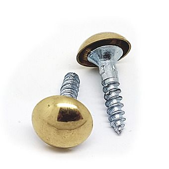 Brass 8 x 1 Slotted Dome Screw | Singles