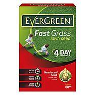 Evergreen Headstart Gold Fast Acting Grass Seeds
