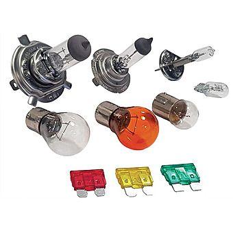 Assorted Car Bulb & Fuse Kit