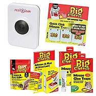 STV The Big Cheese Rodent Trap & Bait Value Bundle with Pest Clear Repeller