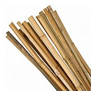 Kingfisher Bamboo Plant Support Canes