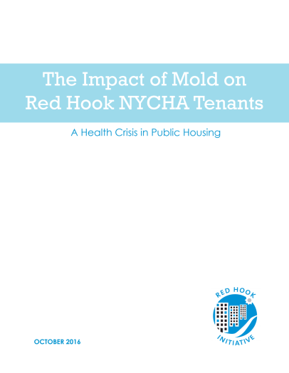 The Impact of Mold on Red Hook NYCHA Tenants