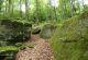Rhön-Rundweg 15 Sinntal Lange Steine
