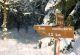 Ein Verschneiter Wegweiser im Rhönwald