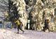 Skilanglauf im Roten Moor