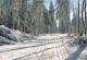 Verschneiter Winterweg beim Ellenbogen