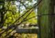 rhoen-rundweg-1-birx-grenzzaun