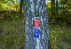 rhoen-nordic-walking-kothen-rot-schilder