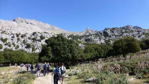 Aktiv Reisen Mallorca
