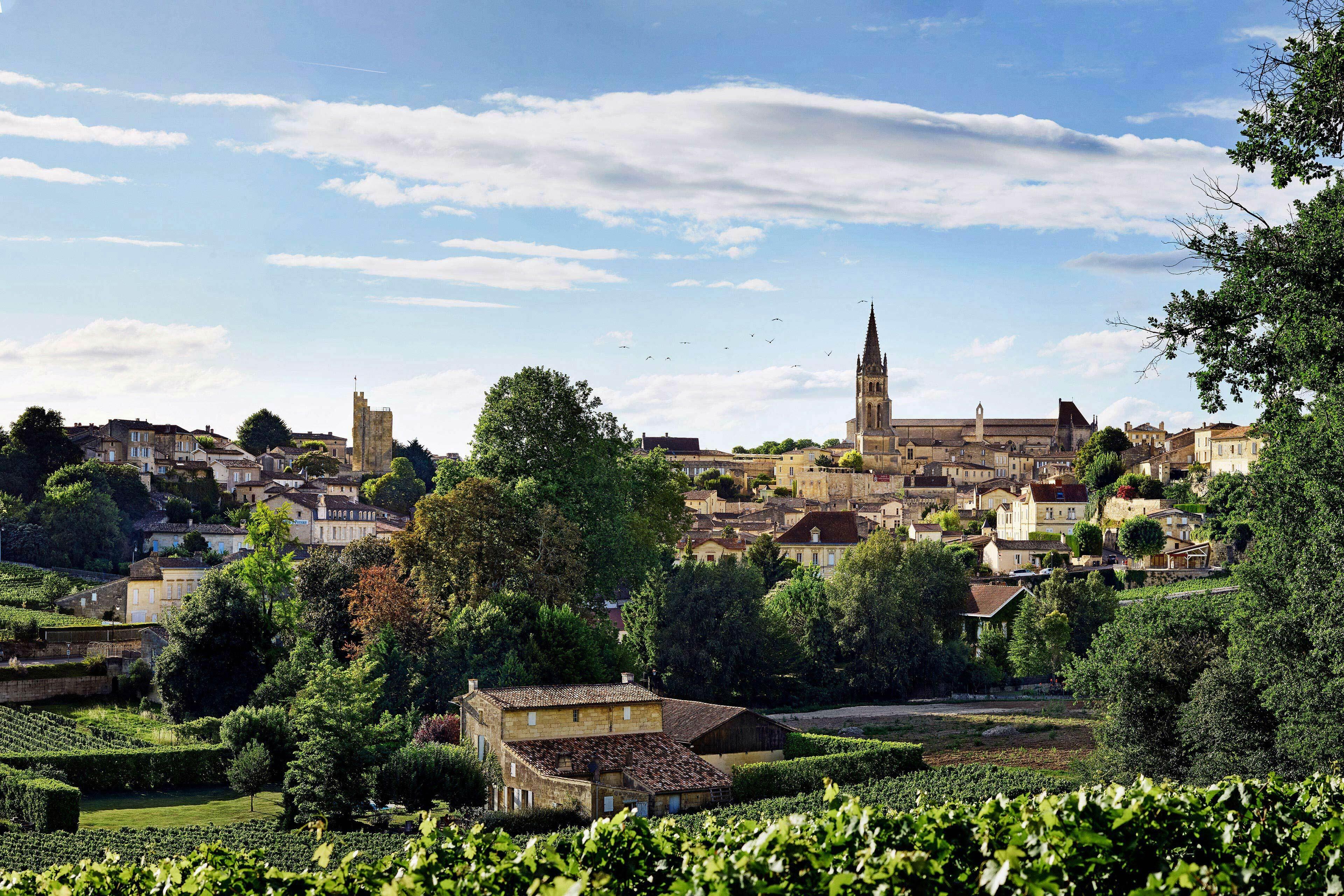 Richard Moran Viniv Wine Bordeaux Lifestyle 001