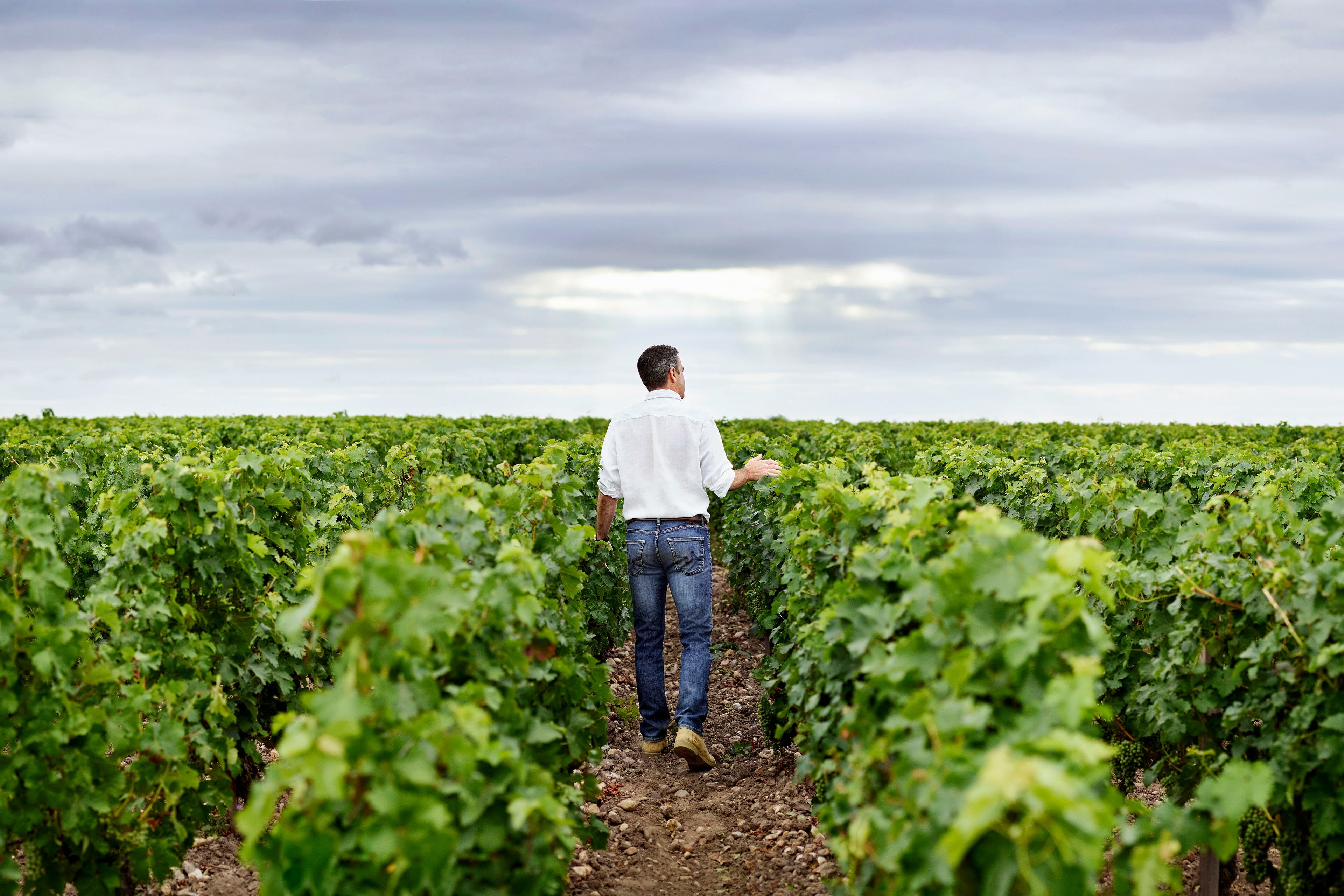 Richard Moran Viniv Wine Bordeaux Lifestyle 005