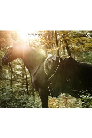 Abschwitzdecke mit Fleecekragen, black von RidersChoice