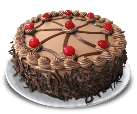 Torta Tres Leches Chocolate