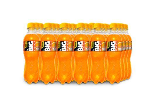 BIG NARANJA PET NO RETORNABLE 360 ml 24 pack