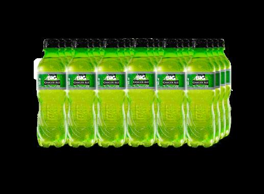 BIG GINGER ALE PET NO RETORNABLE 360 ml 24 pack