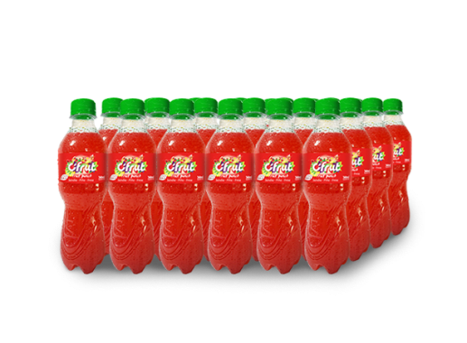 CIFRUT FRUIT PET NO RETORNABLE 360 ml 24 pack