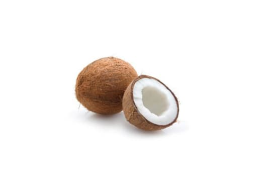 Coco x und (2.2 kg)