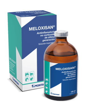 MELOXISAN<sup>®</sup>
