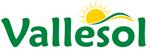Logo de Vallesol