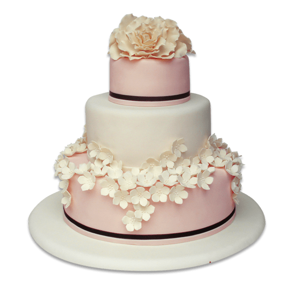 Torta -Torta especial 3 pisos