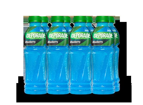 DEPORADE BLUEBERRY PET NO RETORNABLE 360 ML 8