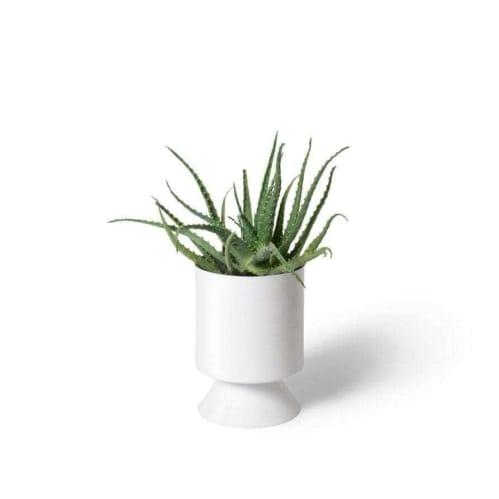 Palm Springs Planter Small - White