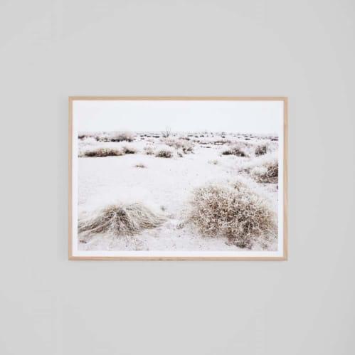Arid Wilderness Framed Print