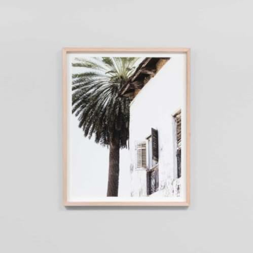 Palm Window Framed Print