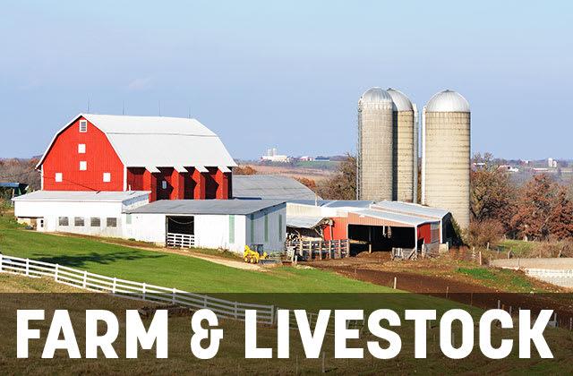 Farm & Livestock
