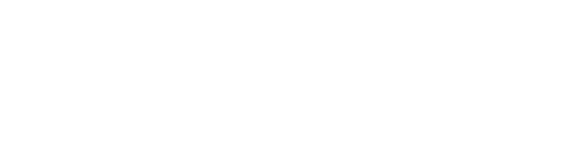 robert nelson photography logo