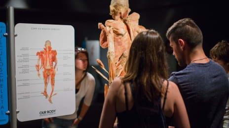 Vizitatori la expoziția științifică Our Body (1)