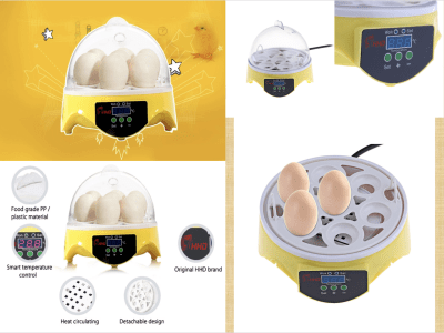Incubadora digital automática de huevos para niños, máquina incubadora de aves de corral de 7 huevos con control de temperatura, Criador para incubar pollos, patos, gansos, codornices, aves, etc.