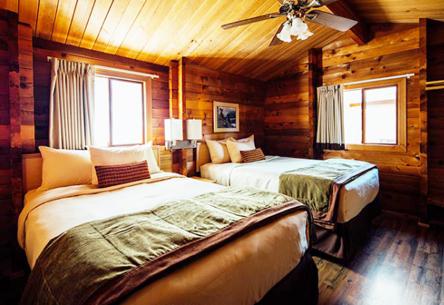 Standard Cabin 2 Doubles