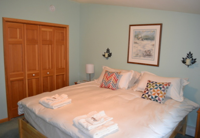 Guest Room King with 1/2 Bath (Shared Shower)