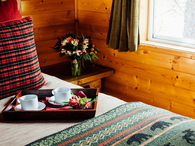 Kenai Fjords Cabin