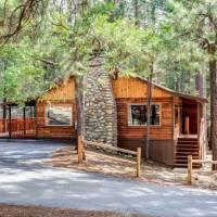 redwoods-in-yosemite-74-1