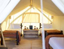 Safari Tent (Shared Bath) with 3 Twin Beds