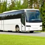 Sightseeing Bus Tour