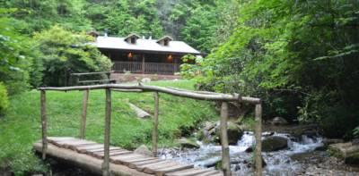 Panther Creek Cabins