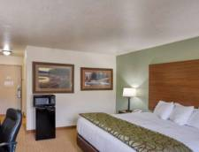 Standard Room 1 King Bed
