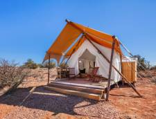 Stargazer Tent with Adjacent Hive