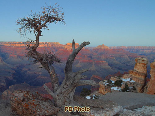 Grand Canyon | Photo Gallery