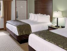 Standard Room - Mountain View - Two Queen Beds