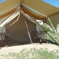 Safari Tent (Shared Bath) with 4 Twin Beds