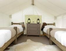 Safari with 3 Twin Beds